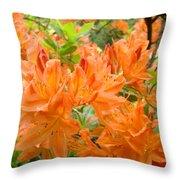 Floral Art Prints Orange Rhodies Flowers Throw Pillow
