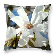 Floral Art Prints White Magnolia Flowers Throw Pillow