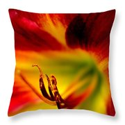 Floral Macro Of A Blossom Throw Pillow