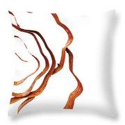 Floral Rust Throw Pillow