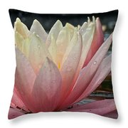 Floral Wonders Throw Pillow
