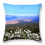 Flores De Los Osos Throw Pillow
