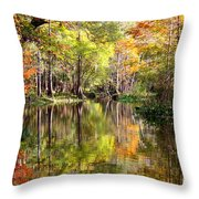 Florida Autumn Secret Throw Pillow