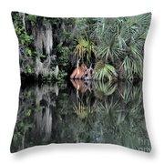 Florida Bayou Throw Pillow