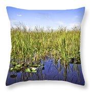 Florida Everglades 5 Throw Pillow