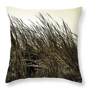 Florida Everglades 6 Throw Pillow