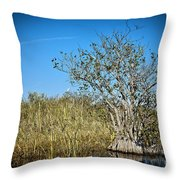 Florida Everglades 8 Throw Pillow