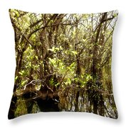 Florida Everglades 9 Throw Pillow