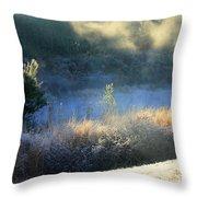 Florida Frosty Morning Throw Pillow