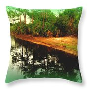Florida Landscape Throw Pillow by Susanne Van Hulst