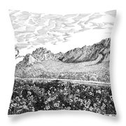 Florida Mountains And Poppies Throw Pillow by Jack Pumphrey