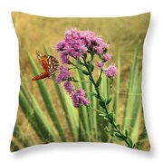 Florida Paintbrush Throw Pillow