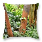 Florida Palms And Ferns Throw Pillow