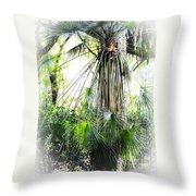 Florida Palms Throw Pillow