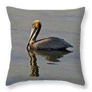 Florida Pelican Throw Pillow