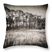 Florida Pine 2 Throw Pillow
