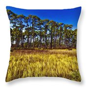 Florida Pine 3 Throw Pillow