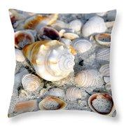 Florida Shells Throw Pillow