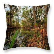 Florida Stream Throw Pillow