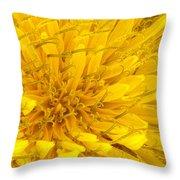 Flower - Dandelion Throw Pillow