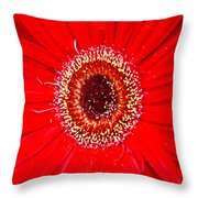 Flower 10 Throw Pillow