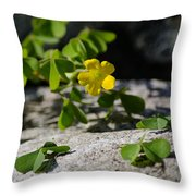 Flower And Dancing Clover Throw Pillow