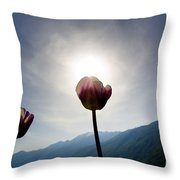 Flower And Sun Throw Pillow