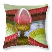 Victoria Amazonica Bud Throw Pillow
