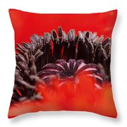 Flower Heart Throw Pillow