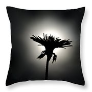 Flower In Backlight Throw Pillow