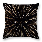Flower In The Sky2 Throw Pillow by Sandi OReilly