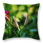 Flower Of Summer Throw Pillow