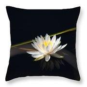 Flower Of The Marsh Throw Pillow