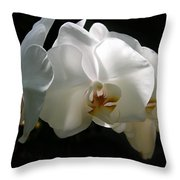 Flower Painting 0004 Throw Pillow