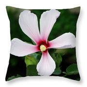 Flower Painting 0007 Throw Pillow