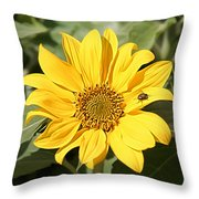 Flower Painting 0010 Throw Pillow