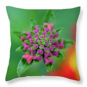 Flower Pop Throw Pillow