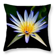 Flower Symmetry Throw Pillow