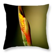 Flowerbud Throw Pillow
