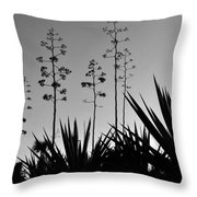 Flowering Agaves Throw Pillow