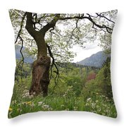 Flowering Maple Tree  Throw Pillow