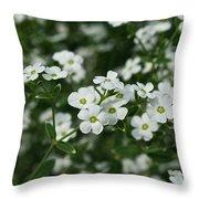 Flowering Spurge Throw Pillow
