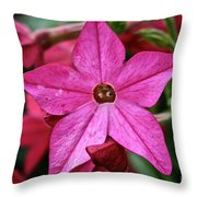Flowering Tobacco Throw Pillow