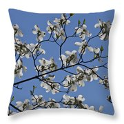 Flowering White Dogwood Throw Pillow
