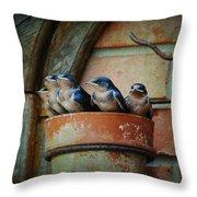 Flowerpot Swallows Throw Pillow by Jai Johnson