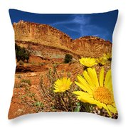 Flowers And Buttes Throw Pillow