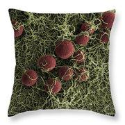Flowers, Digital Streak Image Throw Pillow