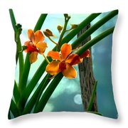 Flowers In Spring Throw Pillow