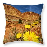 Flowers In The Capitol Throw Pillow