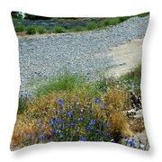 Flowers In The Gold Hill Desert Throw Pillow